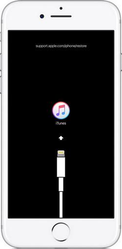 iPhone mit iTunes reparieren lassen