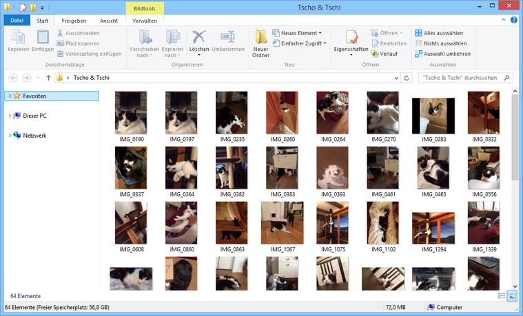 iPad Bilder am PC gesichert