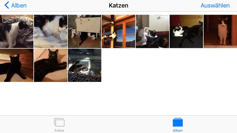Fotoalbum am iPad