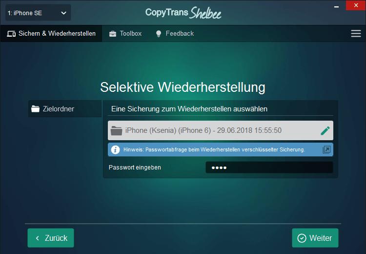 Password für das verschlüsselte Backup eingeben