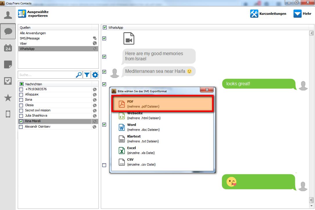 Wählen Sie die PDF-Option um Ihre WhatsApp Nachtichten am PC zu sichern