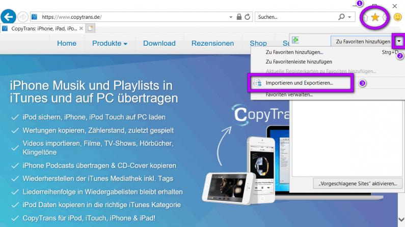 Internet Explorer Lesezeichen
