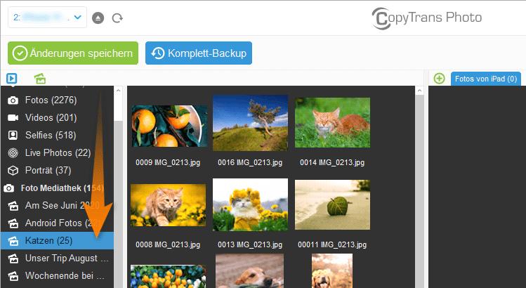 Bilder auf iPad auswählen