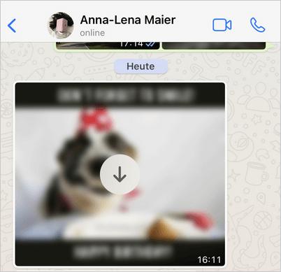 WhatsApp Fotos nicht speichern iOS Gerät