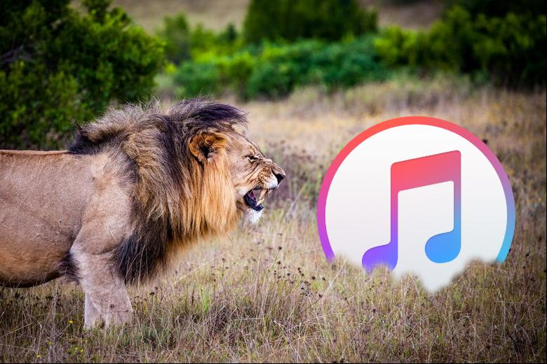 Wie man iTunes Probleme löst