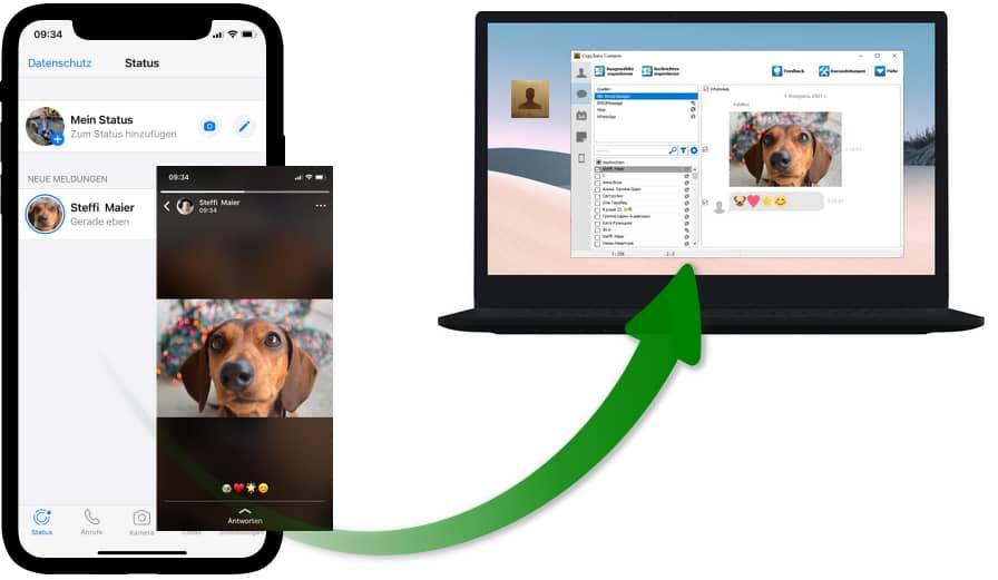 WhatsApp Statusbilder speichern