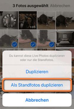 Bewegte Bilder iPhone in Standbild umwandeln